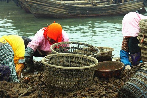 都福渔家-图片